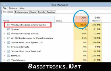 Windows Module installer workers